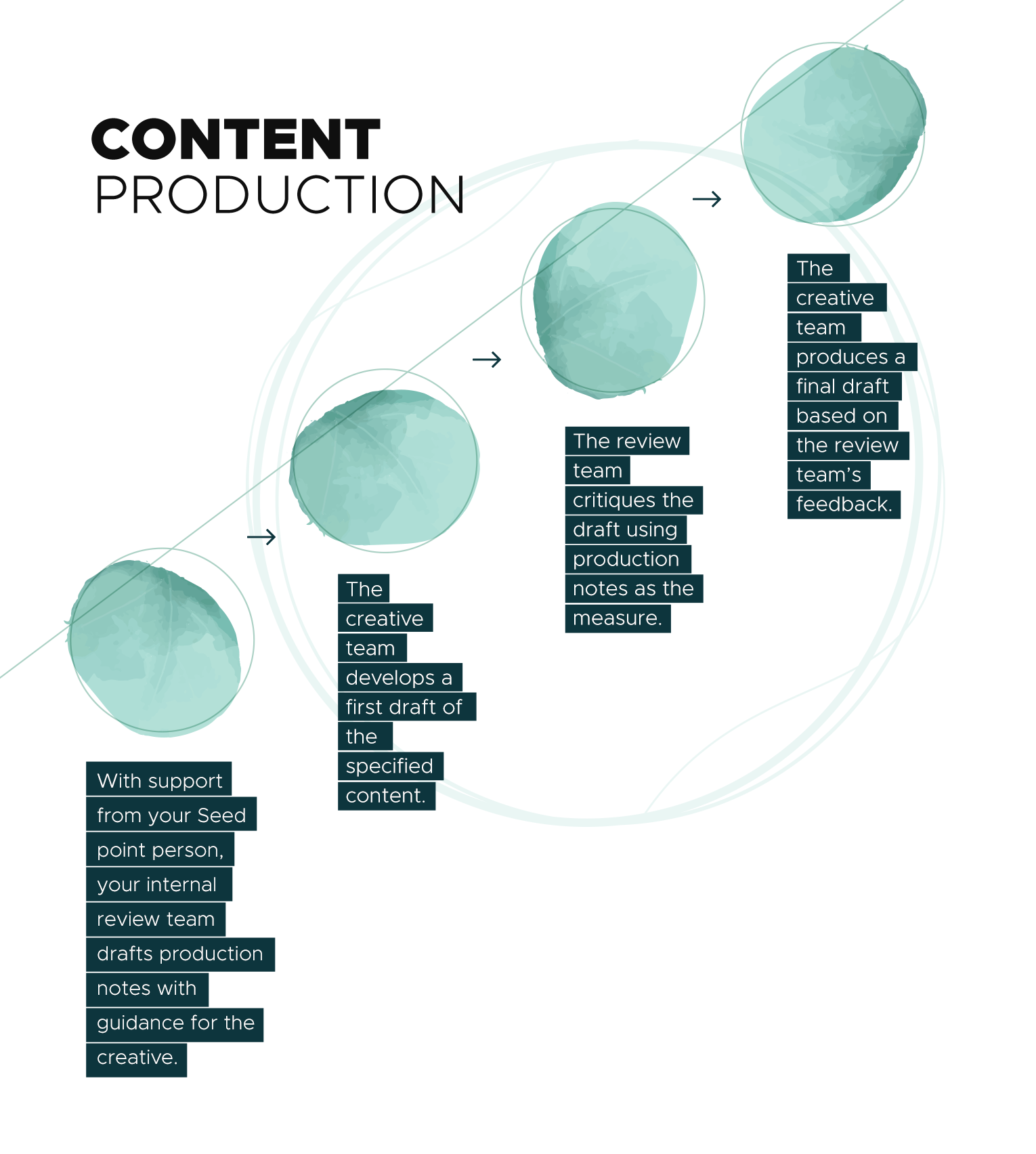 Seed Marketing Content Production